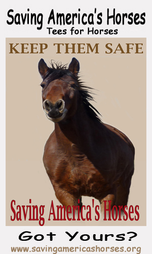 Tees for Horses - Keep them Safe