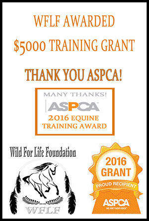 Thank you ASPCA Training Award