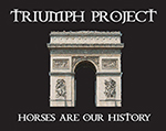 The Triumph Project